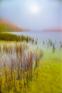A foggy autumn morning on Lake Ciginovac in Plitvice Lakes National Park in Croatia.